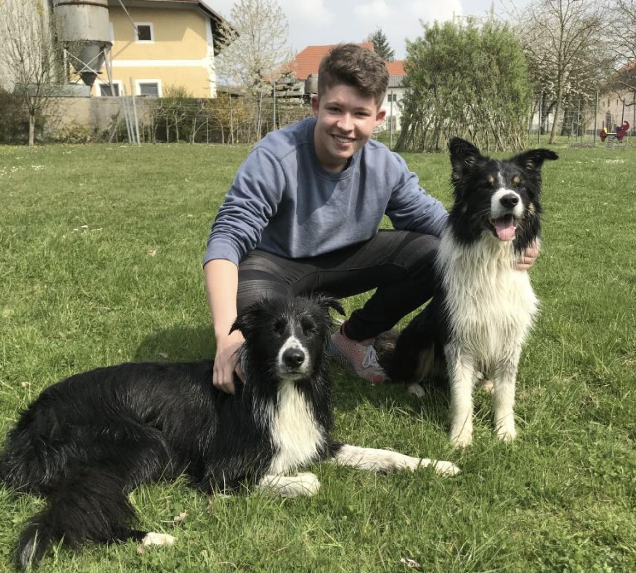 Trick Dogs besuchen unsere Gastfamilien